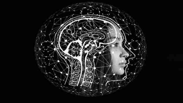 Intelligent, Artificial intelligent